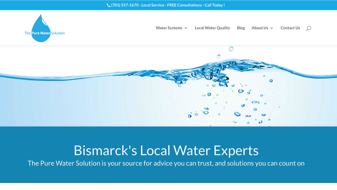 The Pure Water Solution website design and local seo